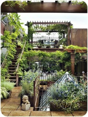 nice rooftop garden