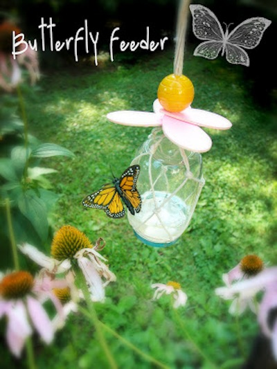 Butterfly4-@-BrightNest-Blog