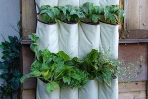 Vertical Gardening Hacks